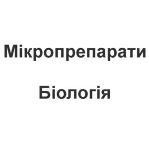 Мікропрепарати - Біологія
